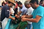 CRIDESAT-UDA entrega semillas a pescadores de Atacama para que inicien sus cultivos