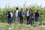 Con visita a terreno CRIDESAT-UDA inicia proceso de colaboración científica y productiva con INDAP Atacama