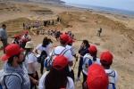 Campamento Paleontológico permitió a estudiantes conocer aspectos científicos del borde costero de Caldera