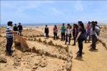 Congreso de Paleontología reunirá durante marzo a expertos sobre formas de vida antigua en Atacama